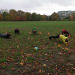 24 жовтня 2020 р. юнацтво станиці Лондон мало теренову гру у Голанд парку